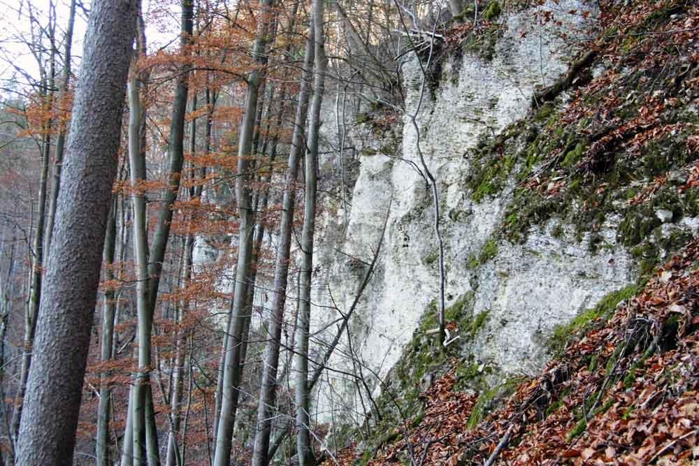 Der versteckte Felsen – eine besondere geologische Kostbarkeit