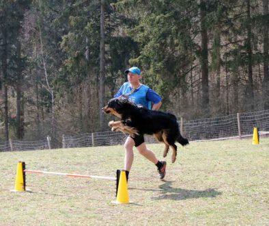 Hundesport-Streufdorf