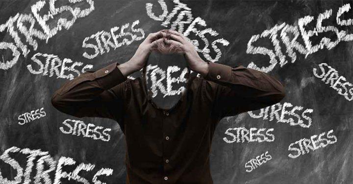 Stress-Vortrag