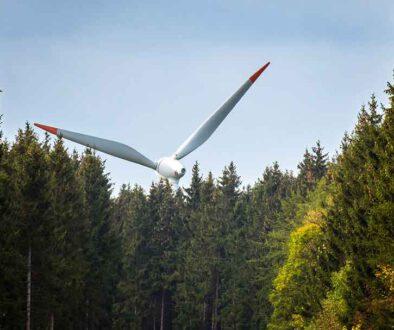Windkraft_Wald
