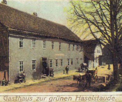 1910-Haeselrieth-Haselstaude