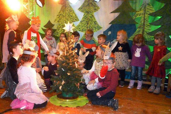 Maerchenhafte-Weihnachten-Pusteblume-Westhausen