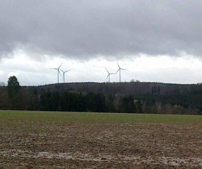 Petition-Kleiner-Thueringer-Wald