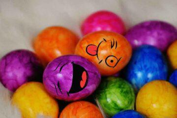 Alles-rund-ums-Ei