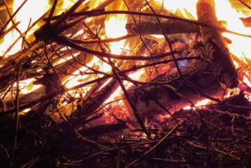 Gruenschnitt-verbrennen