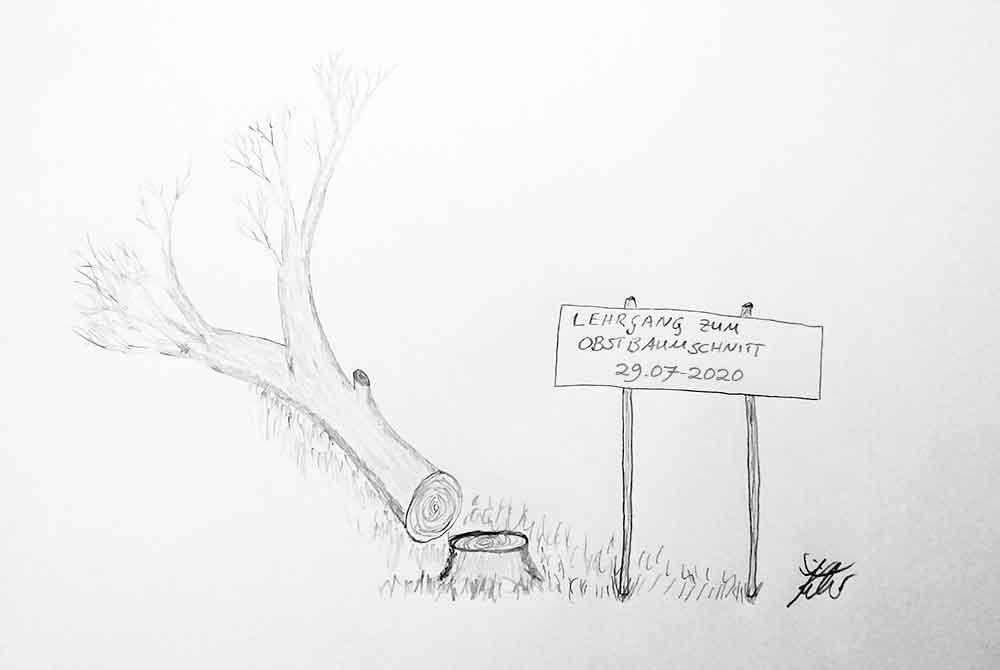 Lehrgang-Obstbaumschnitt