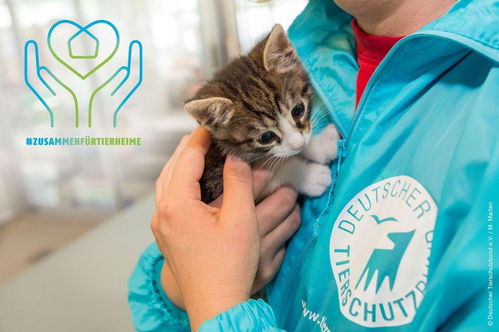 Welttierschutztag-2020