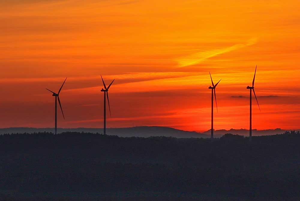 Windkraftausbau im Wald gestoppt