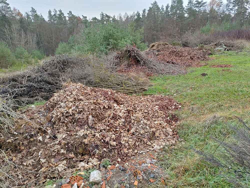 """Lesermeinung zum Artikel """"Illegale Müllentsorgung in den Wäldern Poppenhausens"""""""