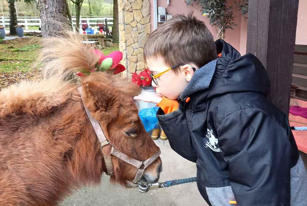 Pferde helfen Kindern