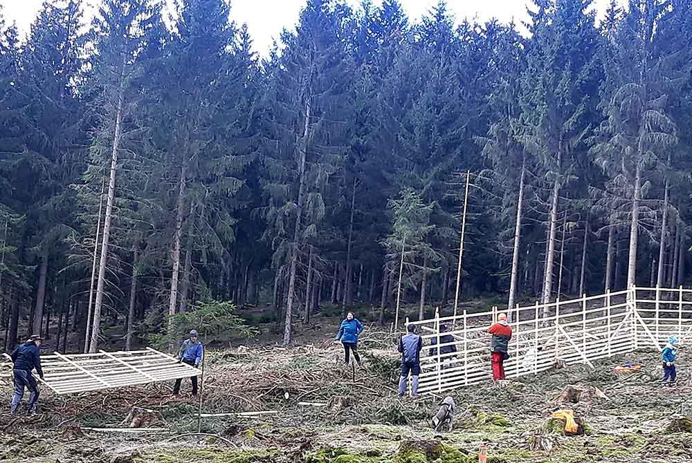 Arbeitseinsatz im Stadtwald Hildburghausen