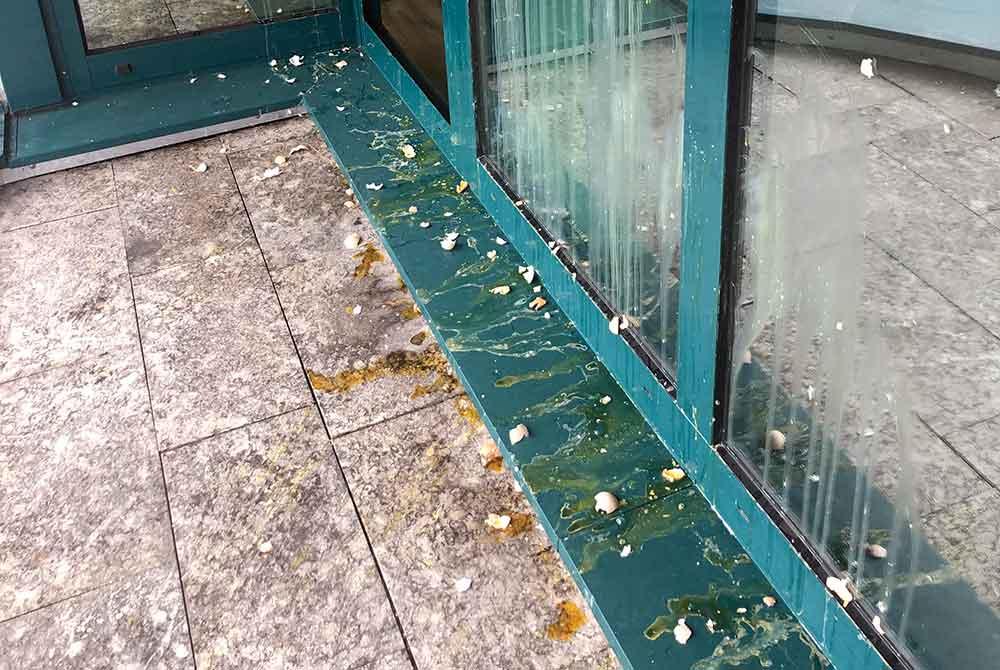 Landrat erstattet Anzeige: Erneuter Eier-Angriff auf Landratsamt