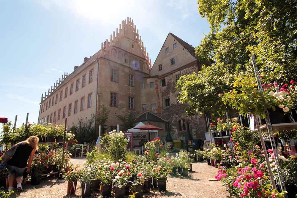 """""""Markt im Park 2021"""": Grüner Wochenmarkt ab sofort bis 19. Juni 2021 in der Burg Ohrdruf"""